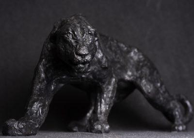 panthère face gros plan - bronze original