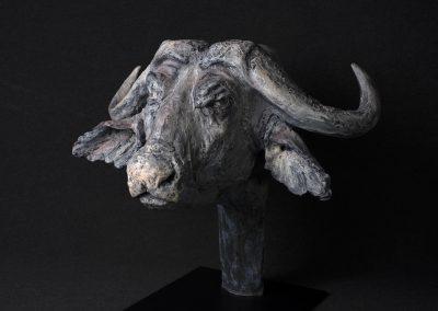 Tête de buffle, 3/4 face gauche - bronze original