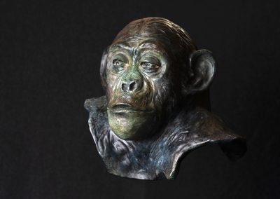 philosophe, 3/4 face gauche - bronze original