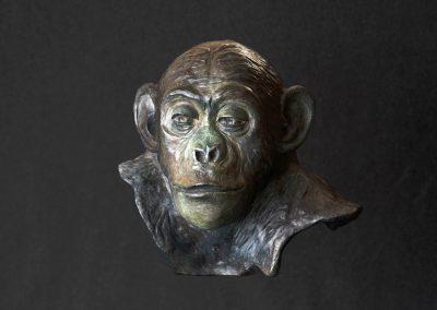 philosophe, face - bronze original